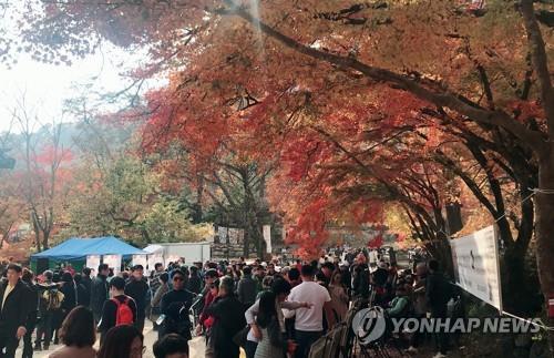 내장산 국립공원 이름 바꾸자…다시 불붙은 명칭 논쟁