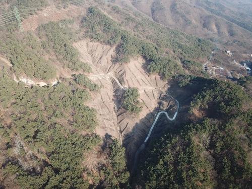 제천 박달재휴양림 자작나무 등 4색 숲 조성