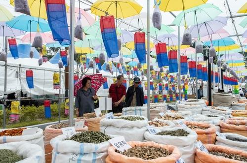 코로나19 확산 차단…영천시 한약·과일·와인축제 취소