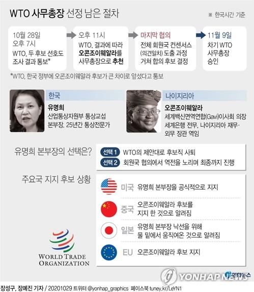 """미국 지원에도 고민되는 WTO선거…정부 """"향후 절차 검토 중""""(종합) - 2"""