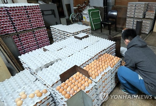 Egg supply to soldiers falls greatly due to bird flu - 1