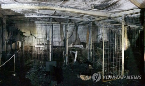 This photo, released by the Gyeonggi Fire Agency on Dec. 7, 2018, shows a gutted animal shelter in the city of Anseong, south of Seoul, after it was hit by a fire earlier in the day. (Yonhap)