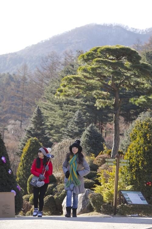 매년 겨울 화려한 불빛으로 장식하는 가평 아침고요수목원.(성연재)