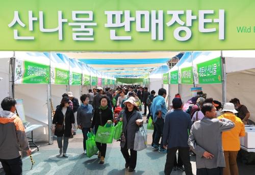 제15회 영양산나물축제 [영양군 제공]