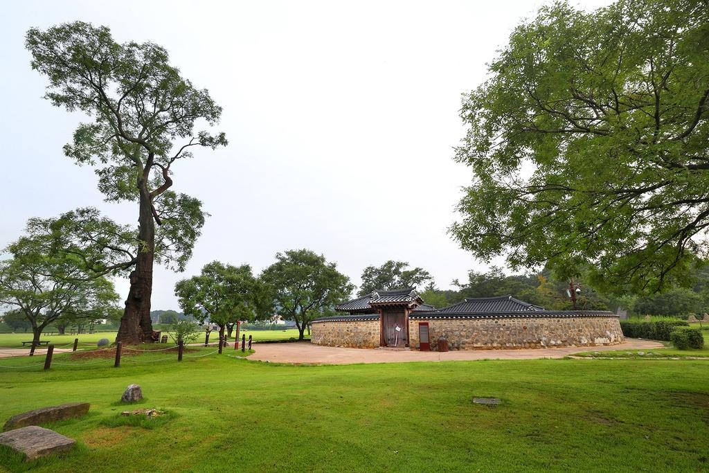 호야 나무(왼쪽)와 재현된 옥사 [사진/조보희 기자]