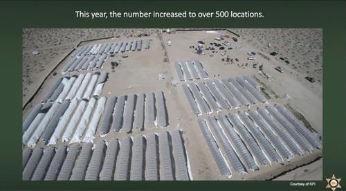LA 앤털로프 계곡 일대의 마리화나 불법 재배 시설