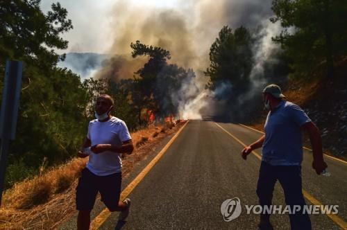 터키 산불