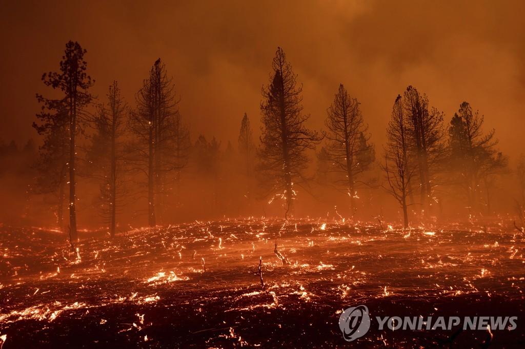 화염과 연기로 뒤덮인 캘리포니아의 한 지역 [AP=연합뉴스]