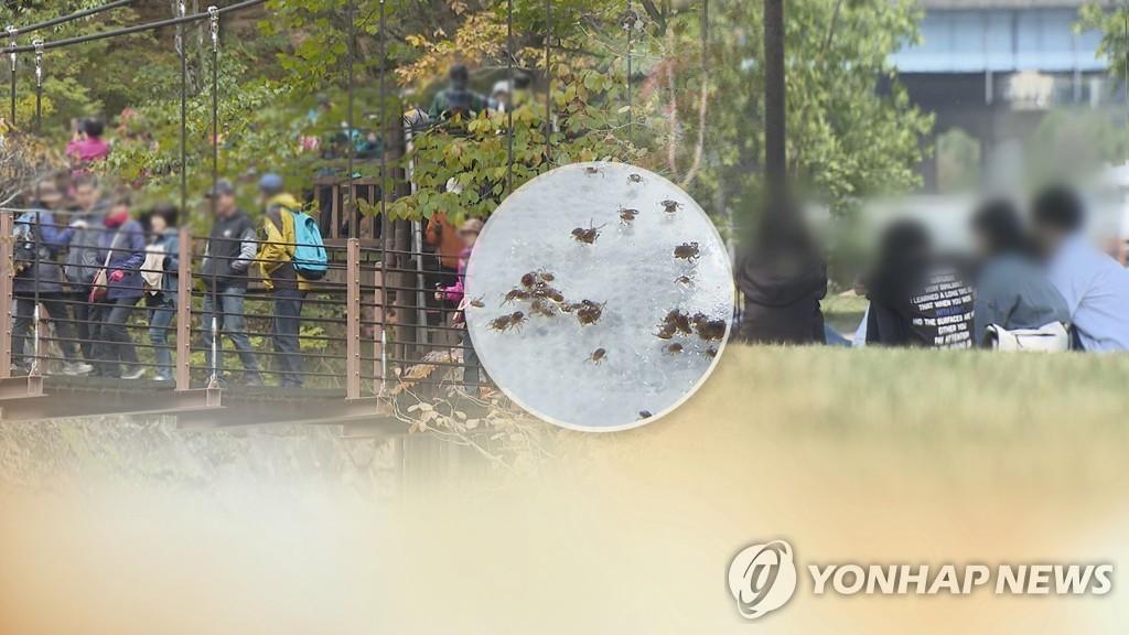 가을철 쯔쯔가무시병 주의…긴옷·곤충기피제 챙겨야 (CG)