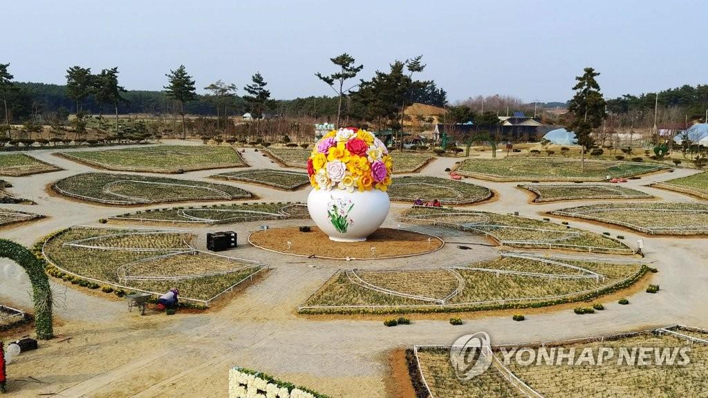 '제2회 태안수선화축제' 메인동산 [네이처월드 제공]