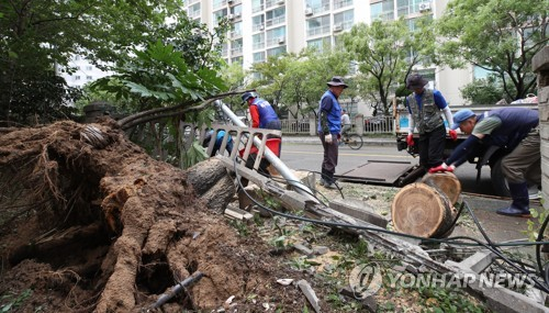 (2nd LD) S. Korea working to recover from Typhoon Tapah damage