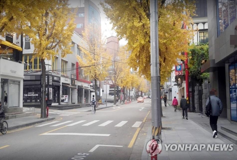 법정도로 된 강남구 '가로수길', 도로표지판 싹 바뀌어